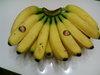 Banana_20110116