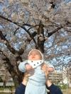 Hiromichi_20070406_harukazekouen1